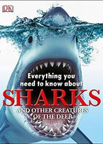 10_everything_need_know_sharks