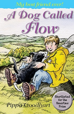 A Dog Called Flow cover: boy playing with dog in field